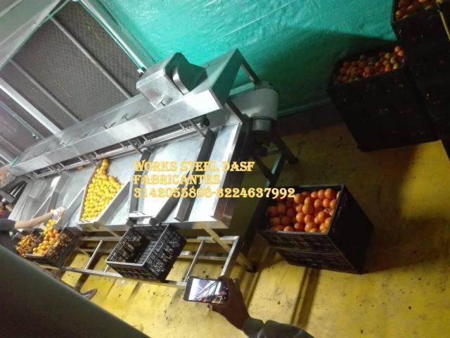 Lavadora de frutas,planta de frutas,despulpadora cepilladoras banda transportadora de alimentos - 1/1