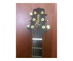 Vendo Guitarra Acustica Takamine G440C