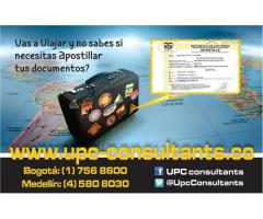 TRADUCTORES OFICIALES SEGÚN SU NECESIDAD EN EL 3113050553