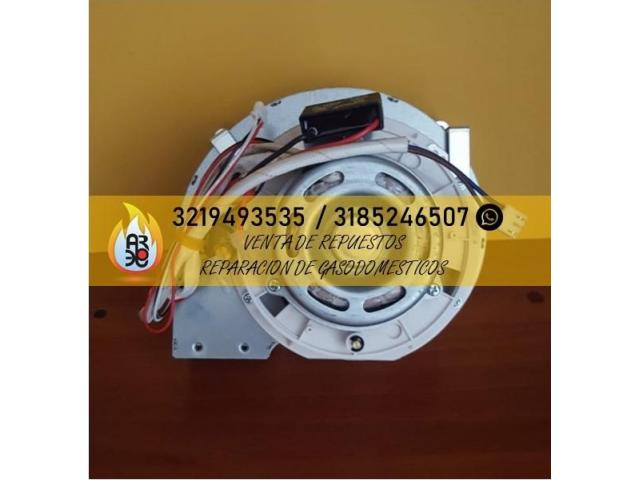 Venta de Repuestos  para Calentadores 3185246507 - 2/4