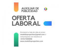 AUXILIAR DE PUBLICIDAD WEB