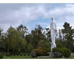 Lotes Cementerio la Inmaculada a Perpetuidad.