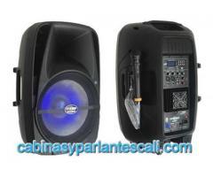 Cabina  de 15 pulgadas seven 7 audio de de alta potencia en Cali