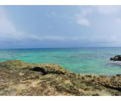 Predios en Venta isla Baru Cartagena