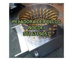 OLLA PELADORA DESPLUMADORA DE POLLOS PARA 5 POLLOS POR BACHE CADA 20 SEGUNDOS