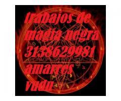 Trabajos De Magia Negra En Cali   3138629981 Amarres De Amor