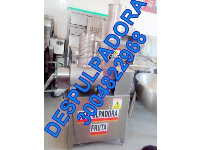 DESPULPADORA DE FRUTAS, MANGO, LULO, GUAYABA - 1/1