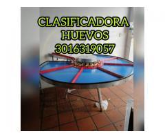 CLASIFICADORA DE HUEVOS DE FACIL MANEJO PARA GRANJAS PRODUCTORAS