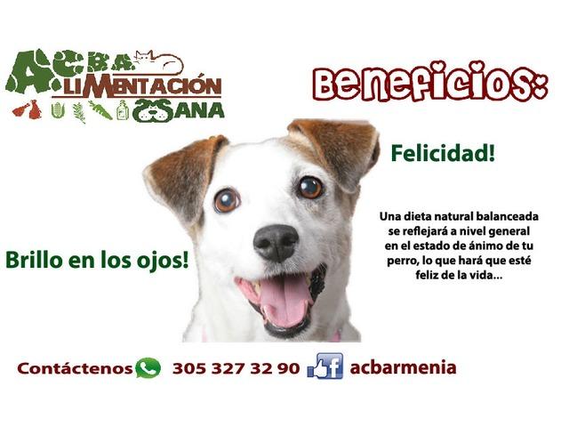 Dieta cruda para mascotas - 2/4