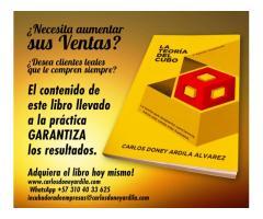 """Libro de ventas """"la teoría del cubo"""""""