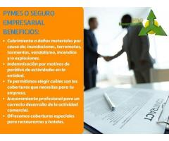 SEGURO PYMES O EMPRESARIAL ''HBG INVERSIONES''