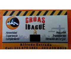 SERVICIO DE GRUAS IBAGUE