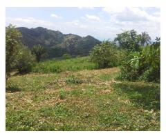 Se vende Finca en Viota Cundinamarca 12 fanegadas